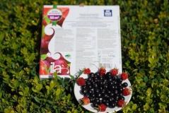 Добриво для винограду, малини, ожини, смородини Yara Vila 1кг