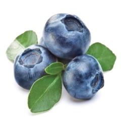 Голубика Чандлер плоды