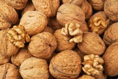 Орех грецкий Буковинский-2 плоды