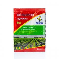 Фолькроп Амин