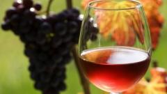 Виноград винный Регент использование
