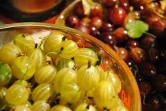 Ribes Russkiy zheltiy