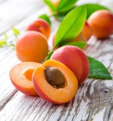 Поперечний розріз плода