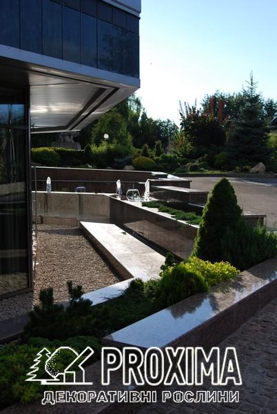 Ландшафтный дизайн около жилого дома в Киеве