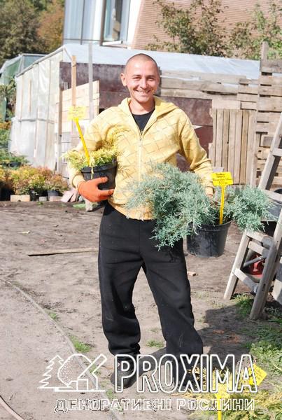 Растения нужно не только продавать с улыбкой, но и загружать с улыбкой