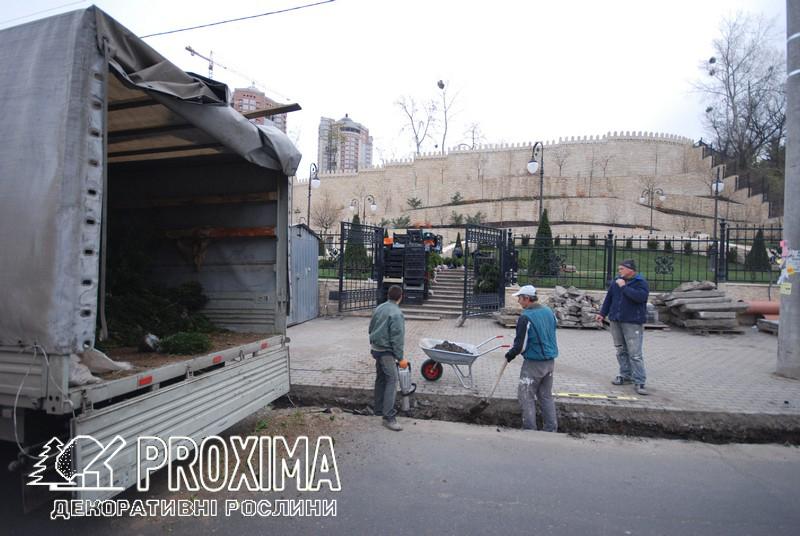 Строительство парка посольства Азербайджана с использованием растений питомника PROXIMA