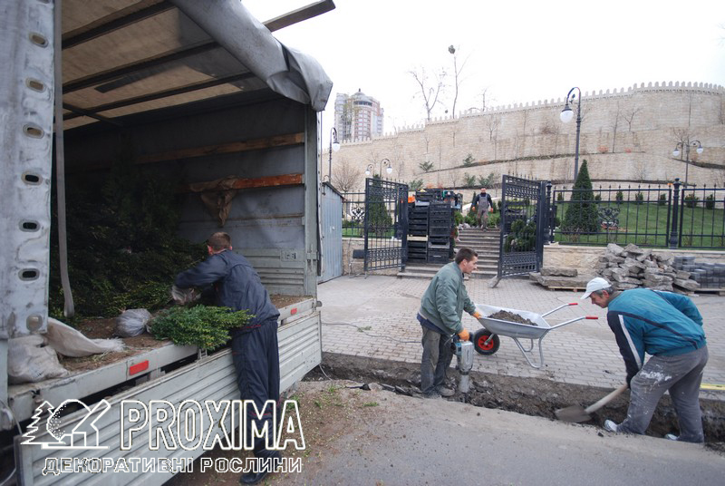 Строительство парка посольства Азербайджана с использованием растений питомника PROXIMA. Киев ул. Глубочицкая.