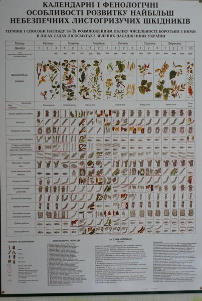 Шкідники наших рослин