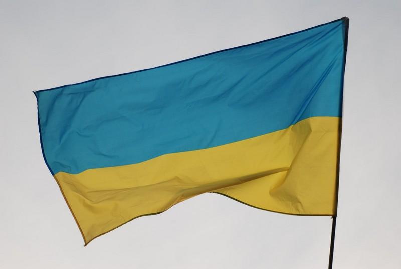 Купуйте рослини від українського виробника. Підтримуємо українську армію у боротьбі проти кремлівських урків