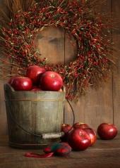 Яблуня домашня Jonaprince