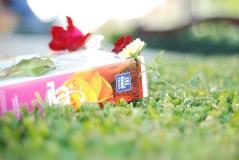 Добриво для троянд Віла Яра