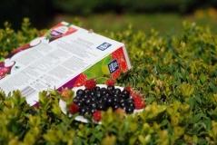 Удобрение для ягодных растений