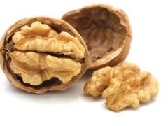 Грецкий орех сорта Интер