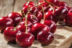 Cherry tree Donetsk Beauty