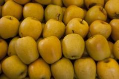 Яблоня Желтый Делишес