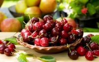 Черешня Ярославна (ранняя) <br>Черешня Ярославна (рання) <br>Prunus avium Yaroslavna
