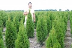 Ближайший к Киеву питомник декоративных растений